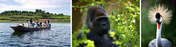 Uganda people and wildlife images