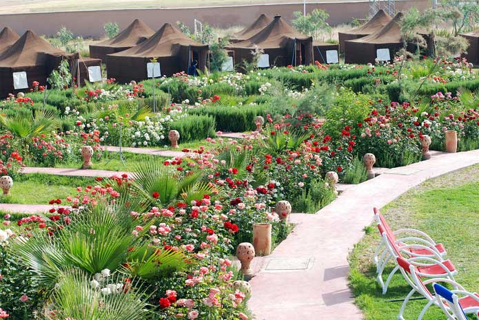 Gardens and tents at Couleurs-Berberes