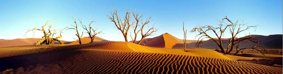 Afbeeldingsresultaat voor namibia banner