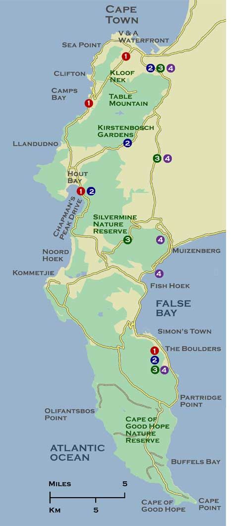 Map of South Africas Top Beaches Cape Towns Atlantic and False Bay